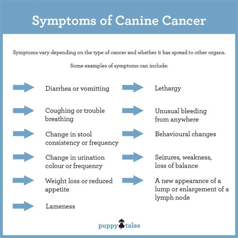 symptoms of cancer in dogs canine cancer information for owners puppy tales