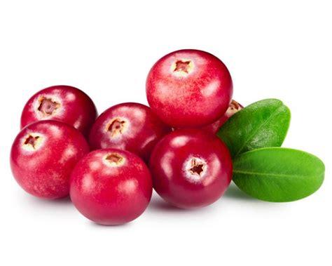 Prive Uri Cran Plus Cranberry Extract Uricran Anti Anyang Anyangan Bebas Anyang Anyangan Dengan Prive Uri Cran 187 Rumah Digital Nissa