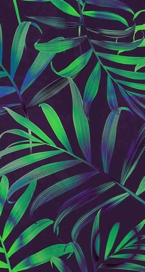 tumblr wallpaper tropical background tropical tumblr wallpaper image 4355431
