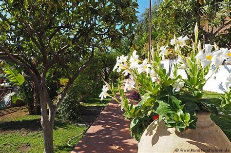 b b giardini naxos giardini naxos bed and breakfast villa vittoria giardini