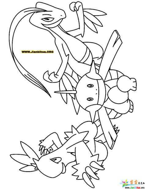 pokemon coloring pages hoenn pokemon hoenn starters coloring pages images pokemon images