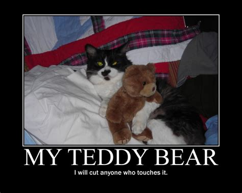 Teddy Bear Meme - teddy bear demotivational poster by eunacis on deviantart