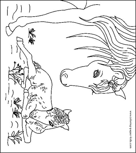 Coloring Pages Of Horses And Foals by Coloring Pages Horses Foals