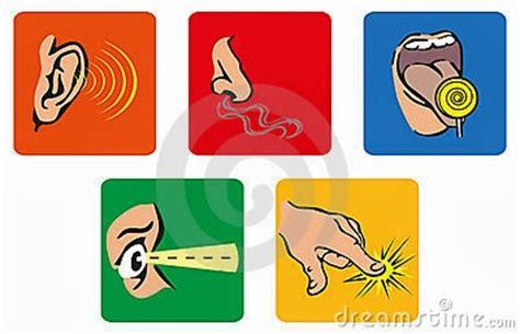 imagenes sensoriales auditivas concepto ergonom 237 a 108 2 1 concepto y clasificaci 243 n de tableros