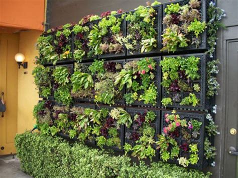 Vertical Garden Ideas Vertical Garden Design Ideas