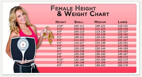 ideal picture height female height healthy weight chart height weight charts