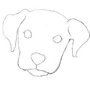 50 Cool Things to Draw that are Easy & Fun for Everyone Easy Dog Face Drawing