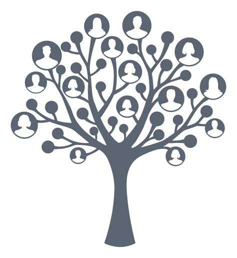Scandinavian Cultural Society Promoting Scandinavian Culture In The Greater Vancouver Area B C Family Tree Clip Vector