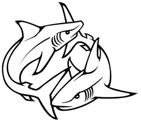 shark outline tattoo shark outline www imgkid the image kid has it