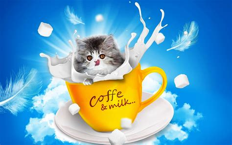 wallpaper free download good morning good morning coffee funny wallpapers download new hd