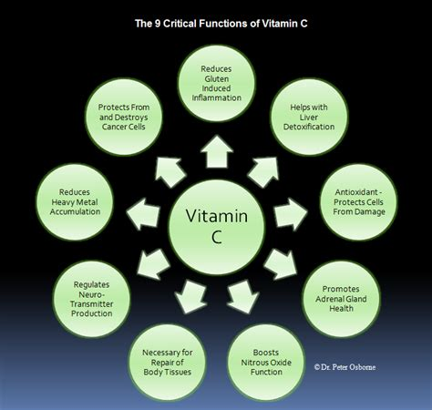 Can You Detox From Much Vitamin C by Detox C Gluten Free Vitamin C Supplement Gluten Free