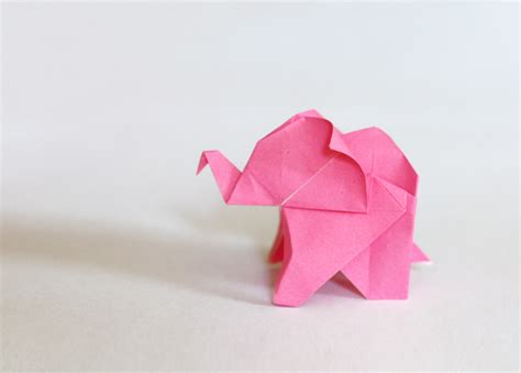 Elefant Origami - fold an origami elephant how about orange