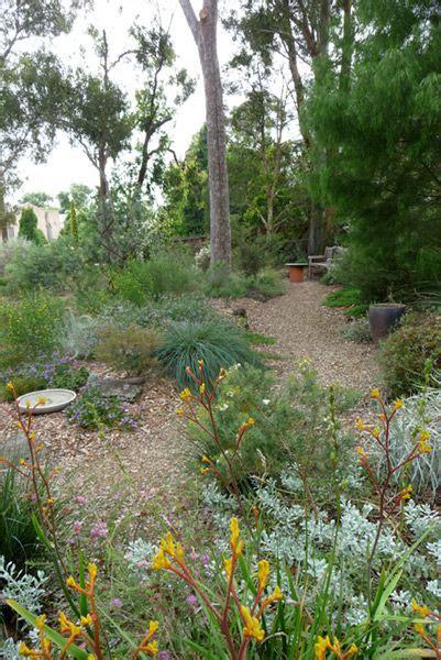 path  long garden bed  angophera sloped garden