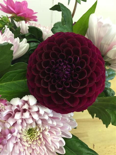 flowers uk britain flowers related keywords britain flowers