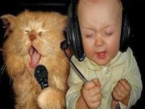 cat episodes cat 2013