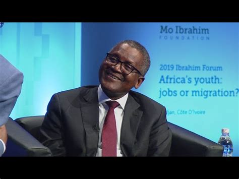 dangote to own 50 000 cows produce 500m litres of milk with 800m dairy investment expressive