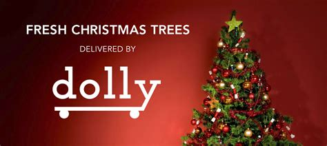christmas tree delivery chicago dolly delivers trees in chicago dolly your move anything app