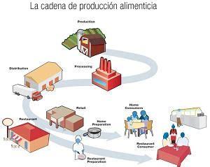 cadenas productivas fao d 243 nde comienzan las enfermedades de origen alimentario y