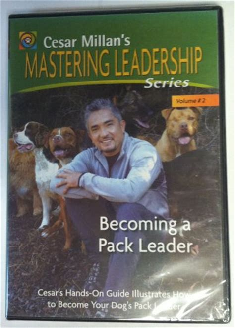 cesar millan s lessons from the pack stories of the dogs who changed my books cesar millan photos and pictures tvguide