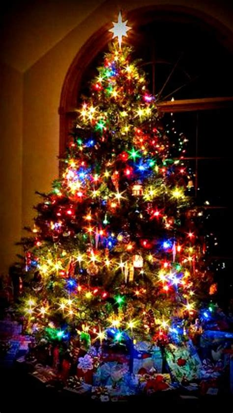 bunter weihnachtsbaum best 25 trees ideas on