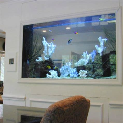 fish tank room design i want a fish tank in the wall of the kitchen and living room home decorations