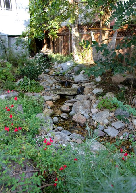 backyard stream visit a mermaid s garden the backyard stream laguna dirt