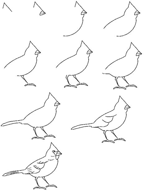 drawing birds learn to learn pencil drawing online pencil drawing basics for kids 1