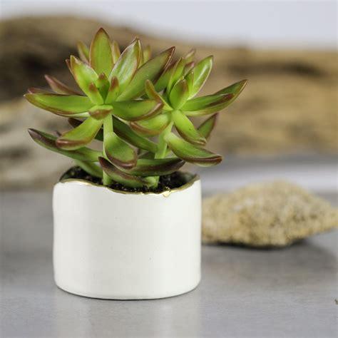 ceramic succulent planter white modern ceramic planter succulent planter ceramic plant