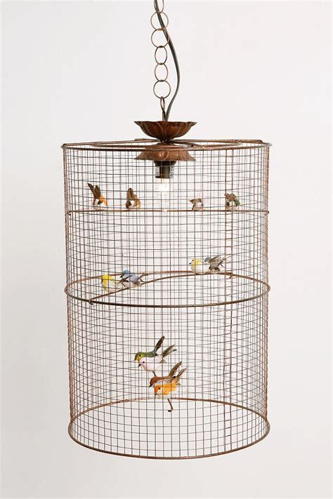 Hanging Bird Cages From Ceiling by 96 Best Images About Birdcage
