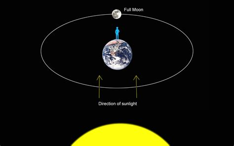 diagram of the earth sun and moon august moon anticipates september s total lunar