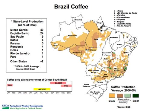 FROST TO NIP COFFEE CROP IN BRAZIL?   Sunrise's Swansong