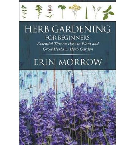 Herb Gardening For Beginners by Herb Gardening For Beginners Erin Morrow 9781681270982