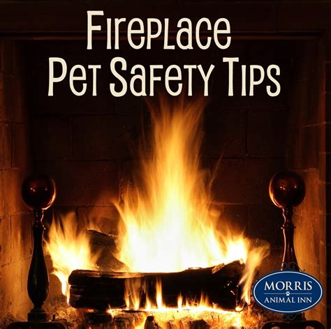 Fireplace Safety Pet Safety Around The Fireplace Morris Animal Inn