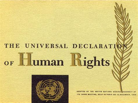 international islamic and human rights can they get along books universal declaration of human rights human rights