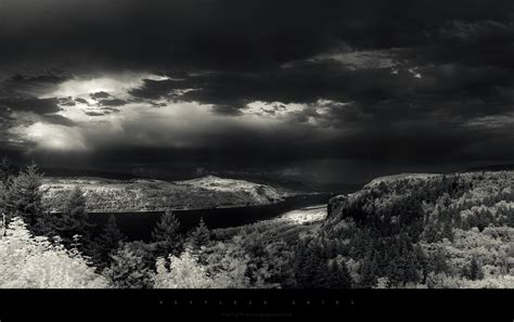 grayscale wallpaper grayscale river forest wallpapers grayscale river