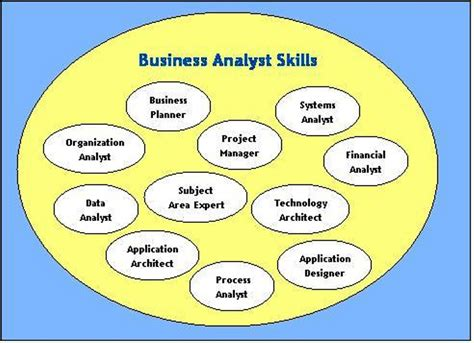 roles and responsibilities of a ba 171 business analyst