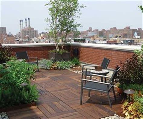 palme da terrazzo corsi giardinaggio