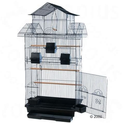 best bird taming part 2 amilo cockatiel large parakeet cage free p p on orders