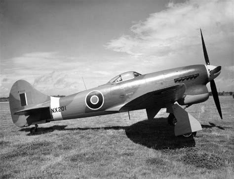 tempest squadrons of the file hawker tempest v parked 1944 jpg wikimedia commons