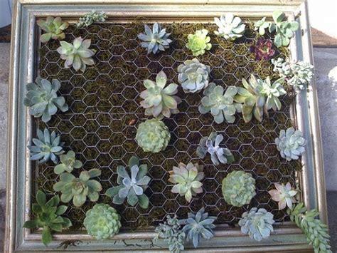 Cactus Vertical Garden Diy Vertical Succulent Garden Adorable Home