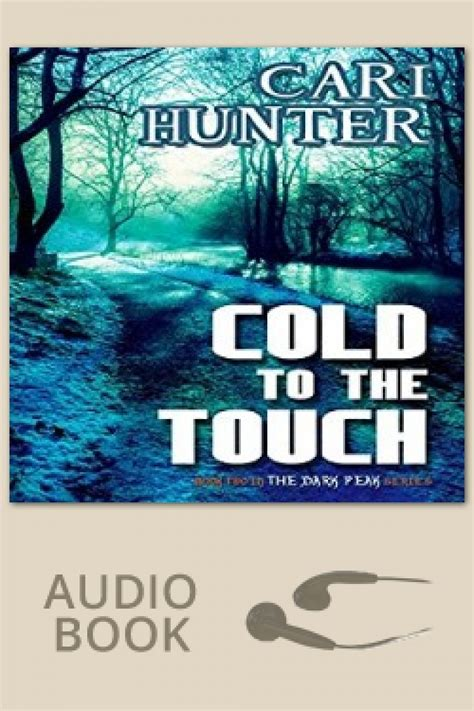 Cold To The Touch cold to the touch by cari bold strokes books