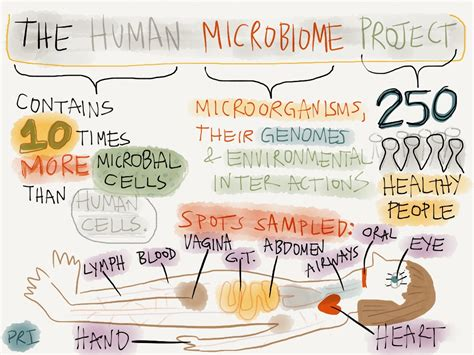 the human in health and illness e book books what is the human microbiome project a visual explanation