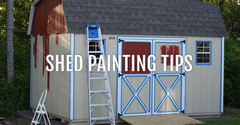 paint  shed shed paint tips