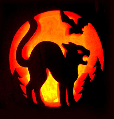cat templates for pumpkin carving 28 best cool scary pumpkin carving ideas
