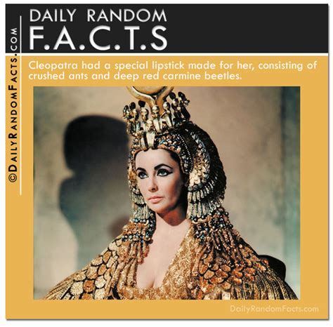 cleopatra biography facts interesting facts about cleopatra vii f f info 2017