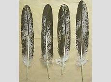 Feathers and Bird Skins : IMITATION EAGLE (3040-0400 ... Imitation Leather
