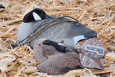 Dakota Sleeper Shells dakota canada goose sleeper shells