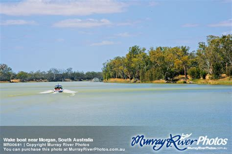 wake boat hire south australia wake boat near morgan south australia