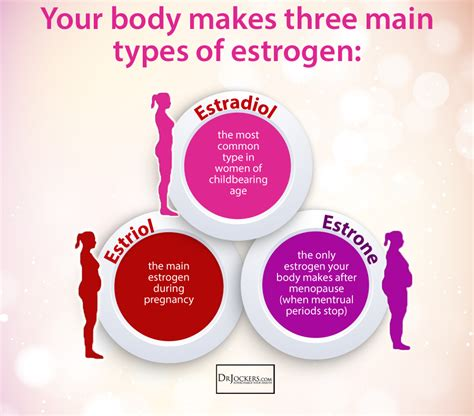 healthy fats to increase estrogen 12 tips to balance estrogen levels naturally