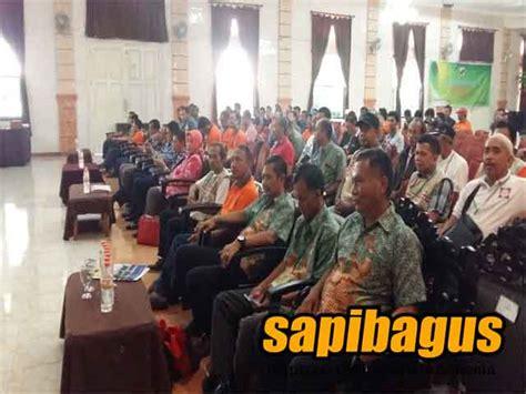 Bibit Sapi Jateng sarasehan dan pembetukkan ketua umum ksi nasional